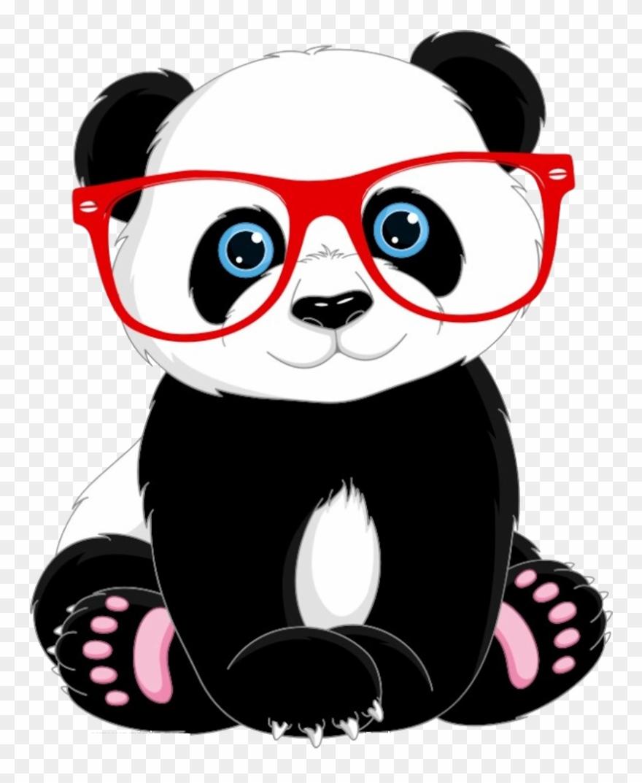 red-panda # 5206853