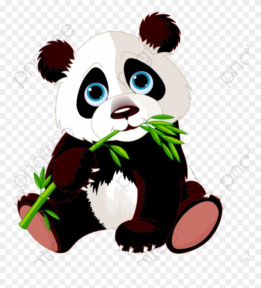 red-panda # 5206393