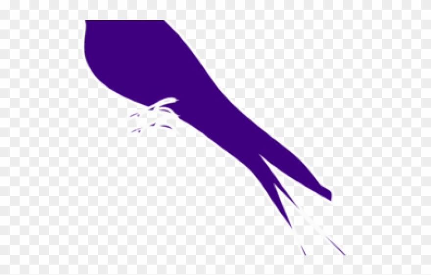 songbird # 5145709