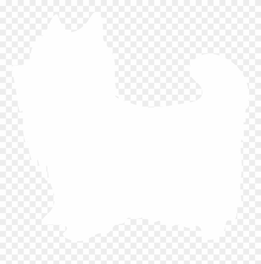 yorkshire-terrier # 5234257