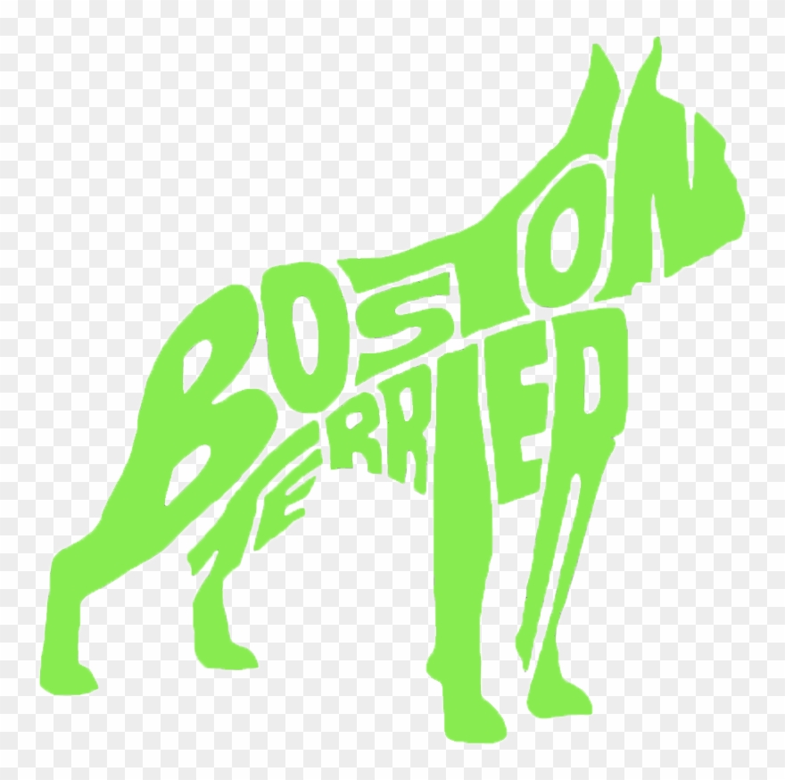 yorkshire-terrier # 5148770