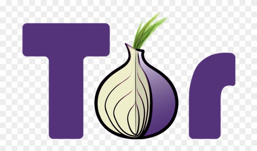 onion # 5031852