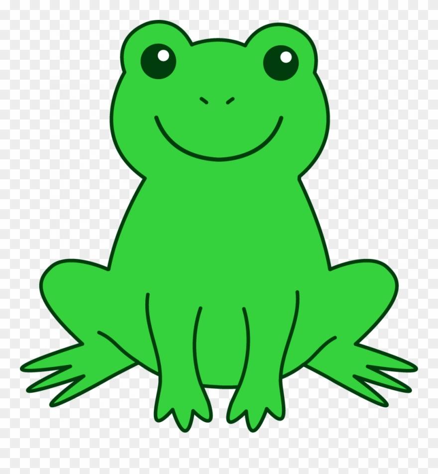 frog # 4862524