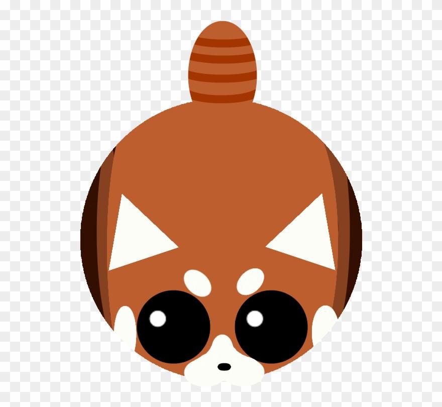 red-panda # 5011129