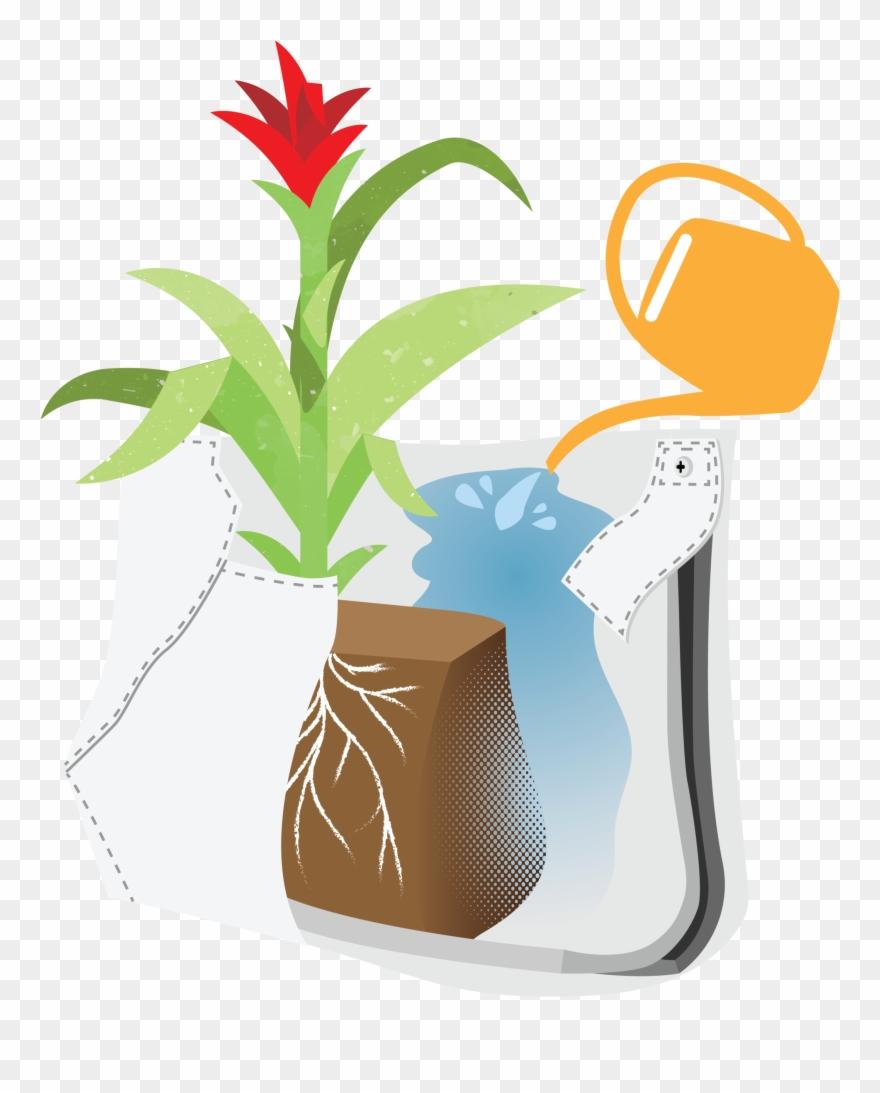 flowerpot # 5012092
