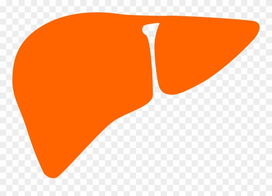 orange # 5012075