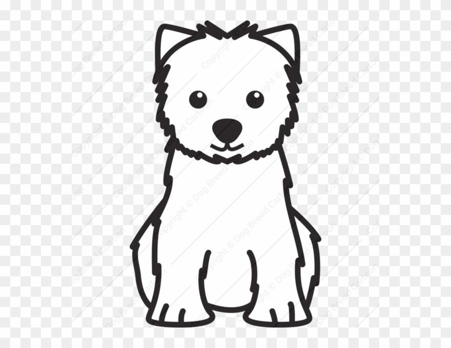 yorkshire-terrier # 5008746