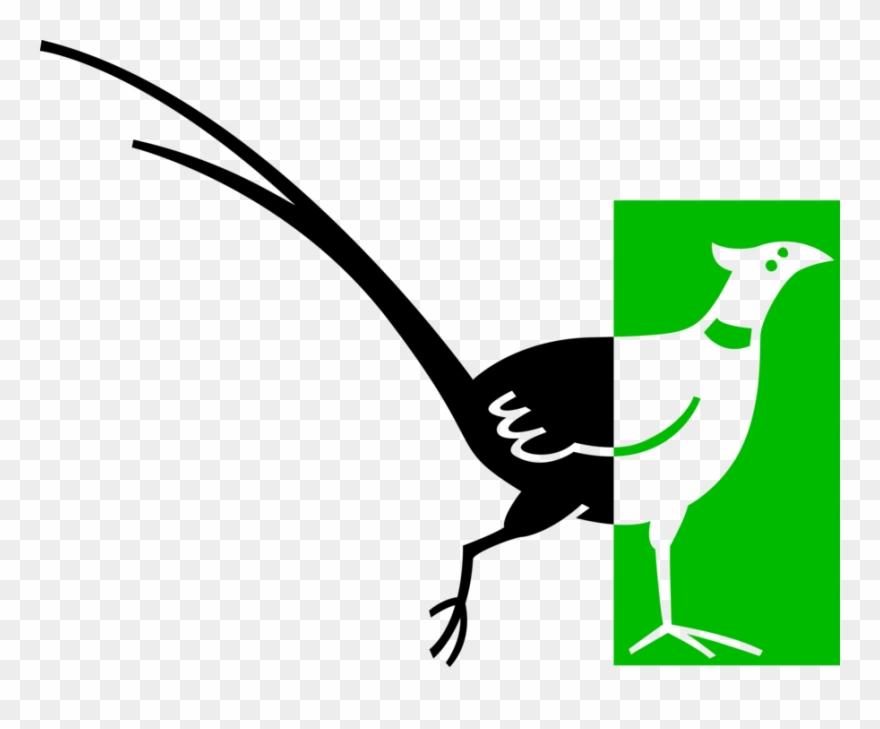 pheasant # 5037317