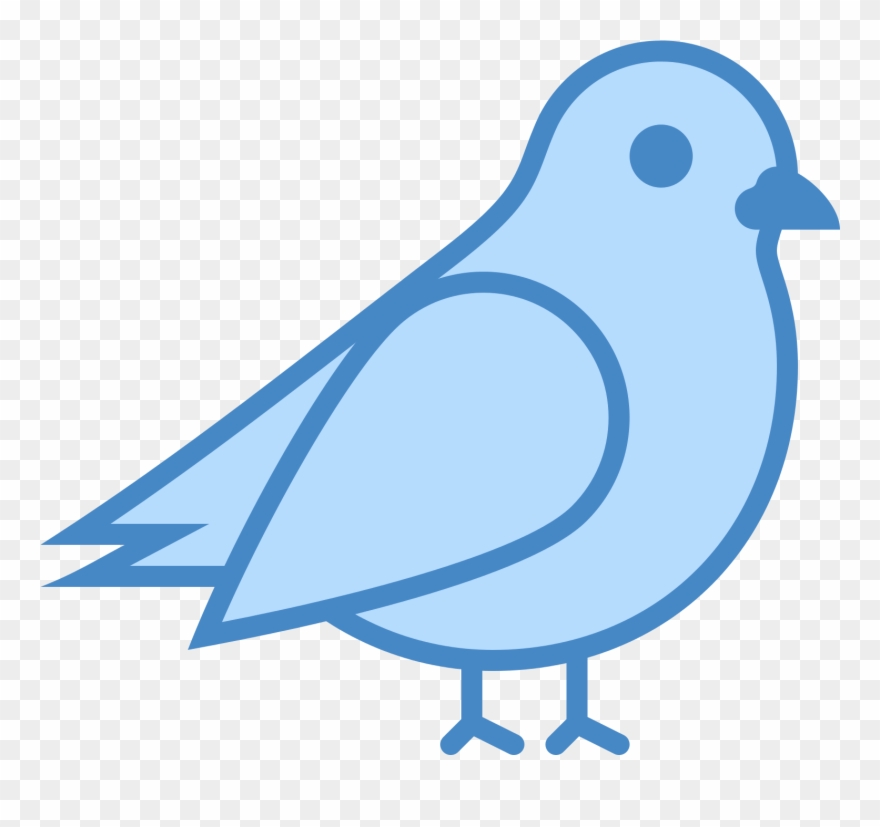 eastern-bluebird # 5039923