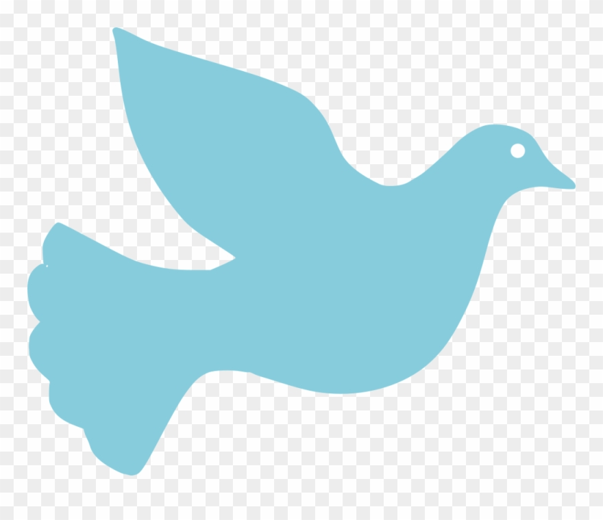 eastern-bluebird # 4864699