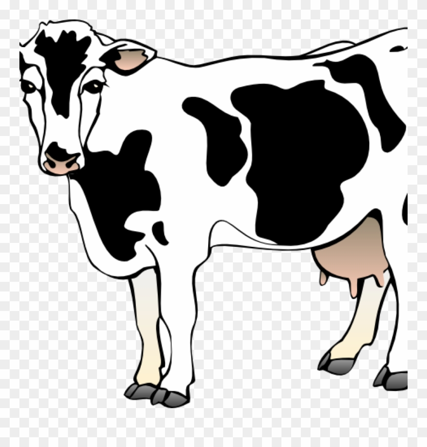 dairy-cow # 4832744