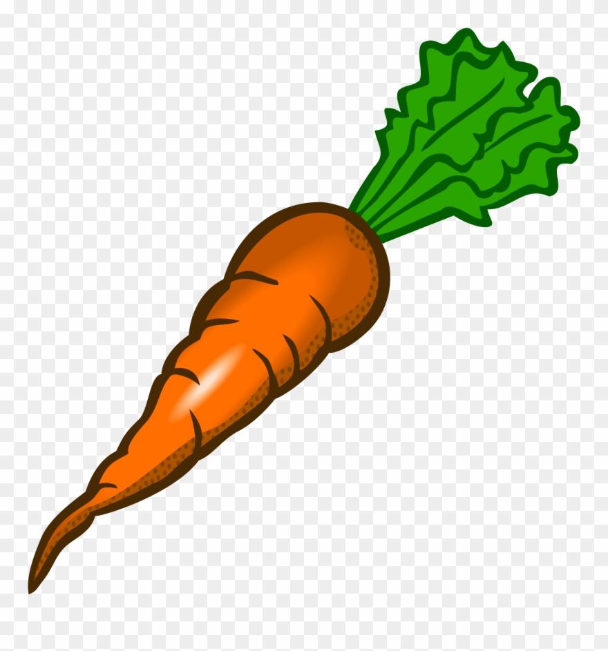 carrot # 4835957