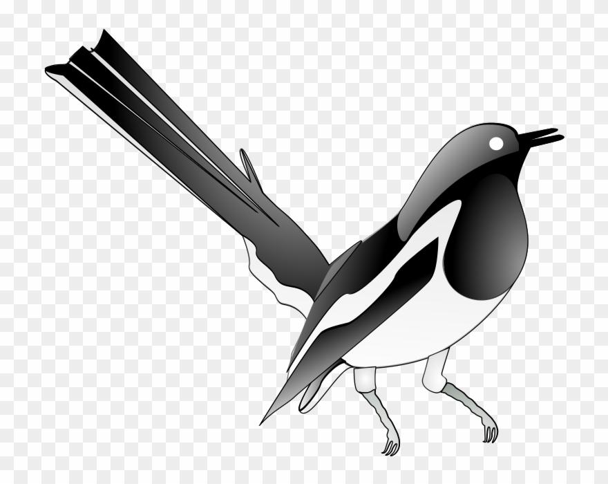 bird-nest # 4858399