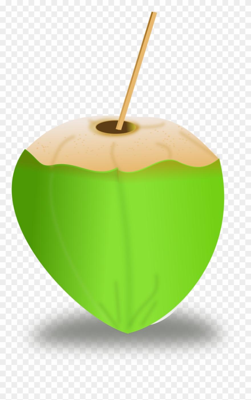 coconut # 4836612