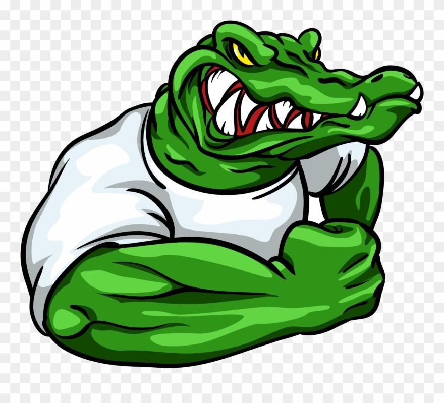 alligator # 5000372