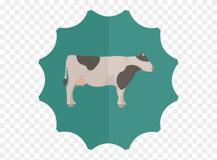 dairy-cow # 5001799