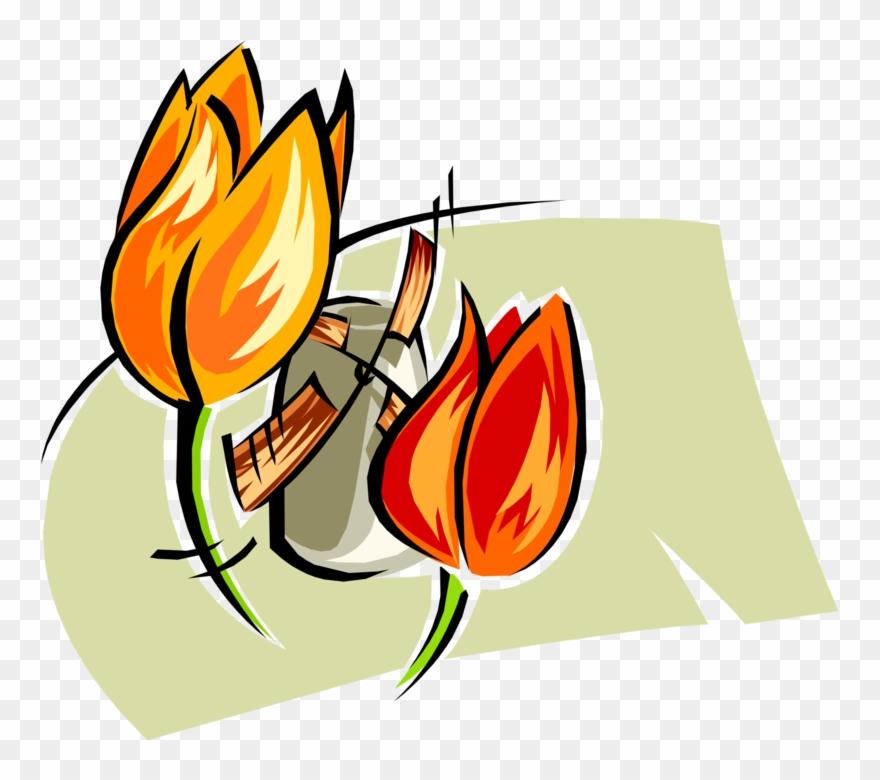 tulip # 5026244