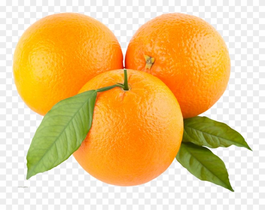 orange # 5018595