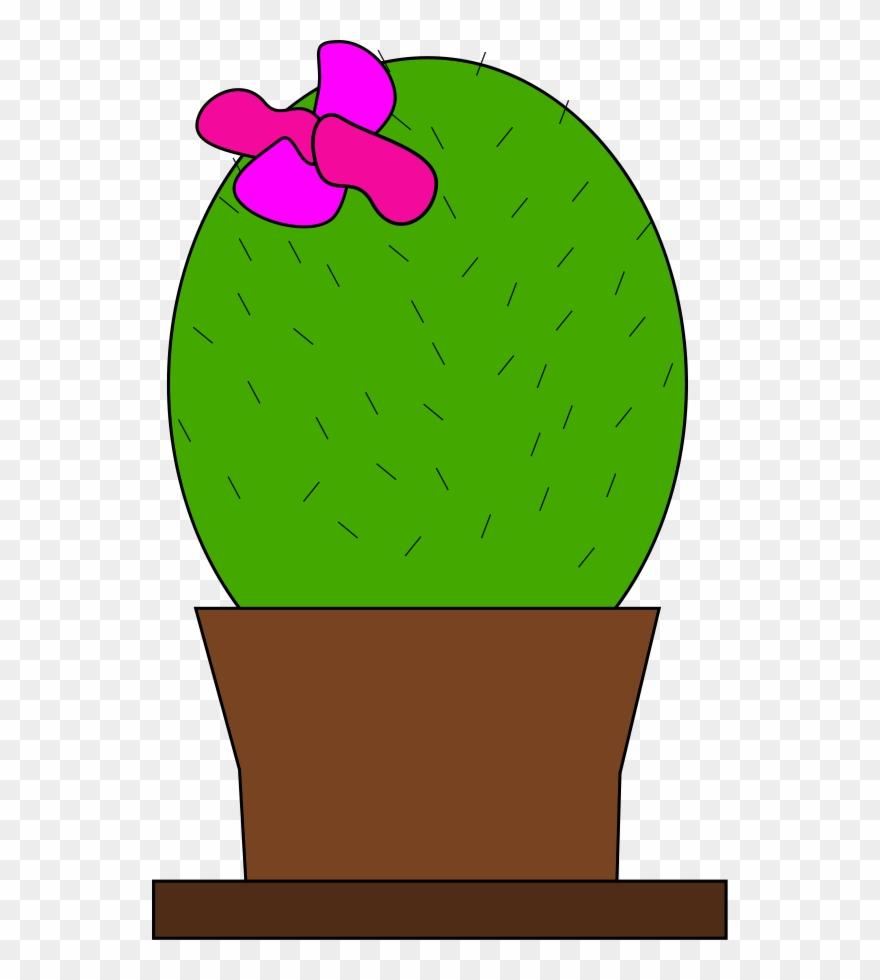 cactus # 4960386