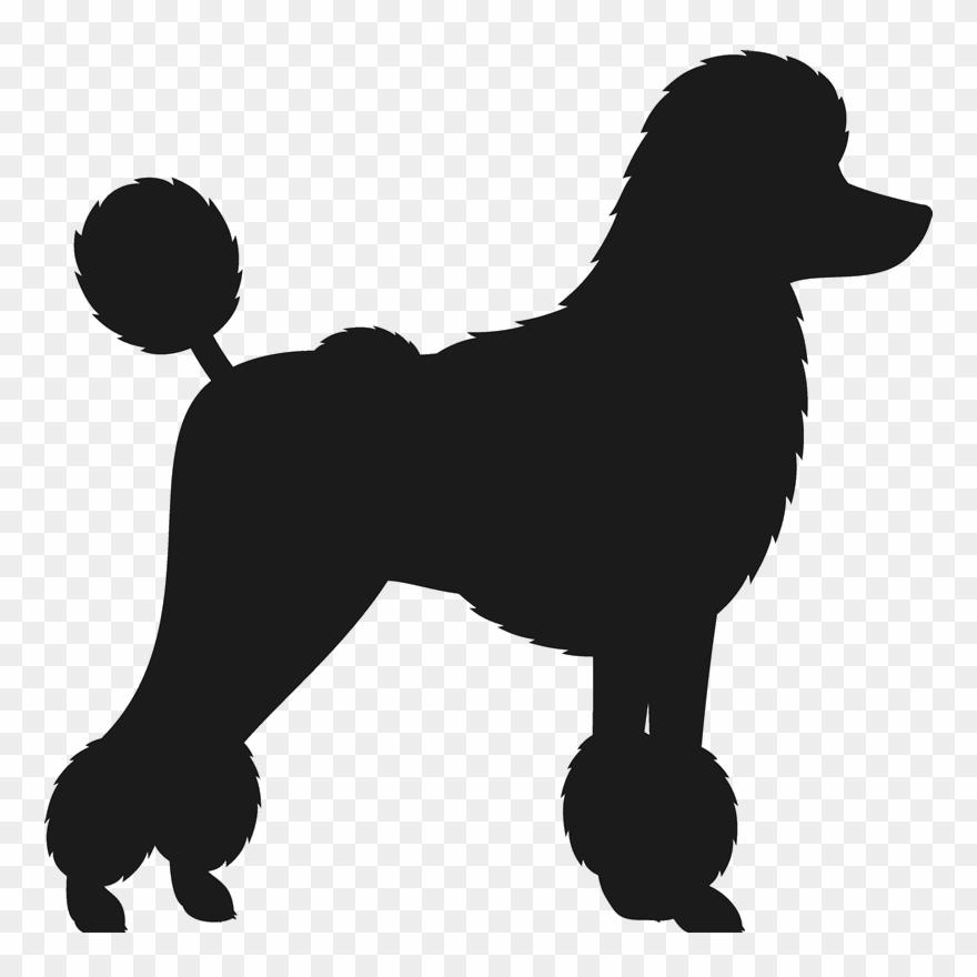 dog-breed # 5041964