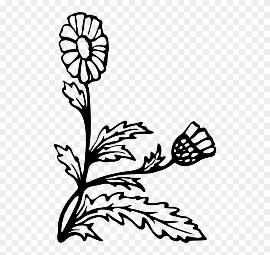 flowering-plant # 5043915