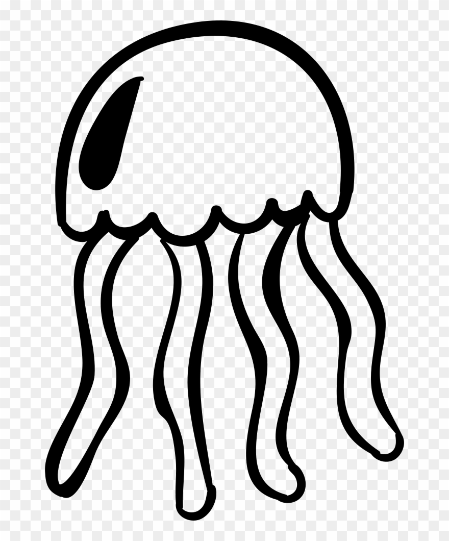 jellyfish # 5025595