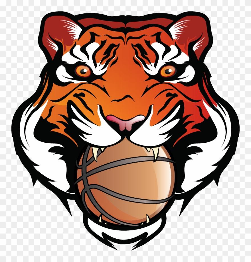 bengal-tiger # 5024832