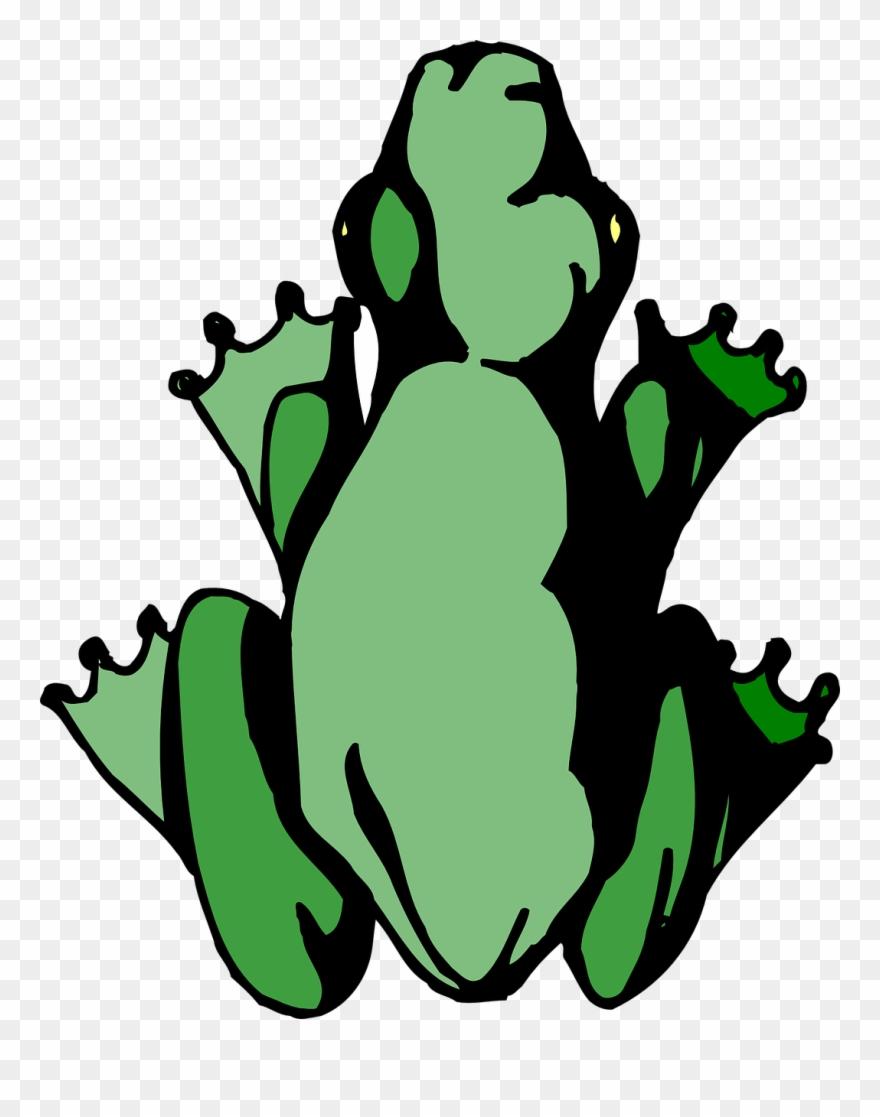 frog # 4847403