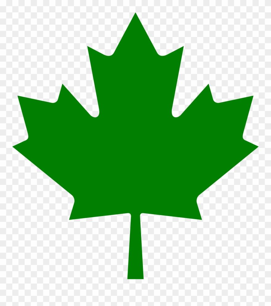 leaf # 4850377