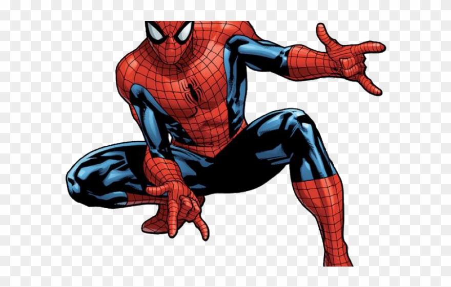 spider # 4846773