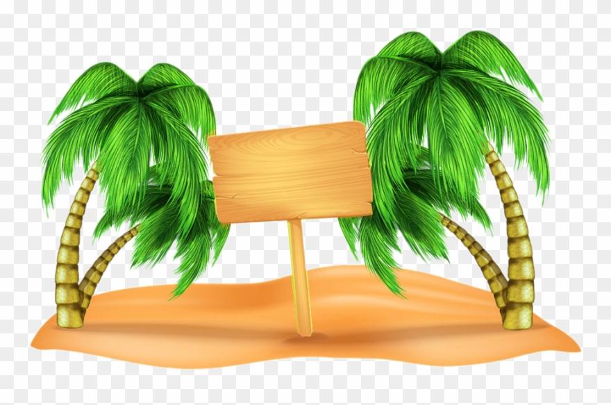 coconut # 4847177