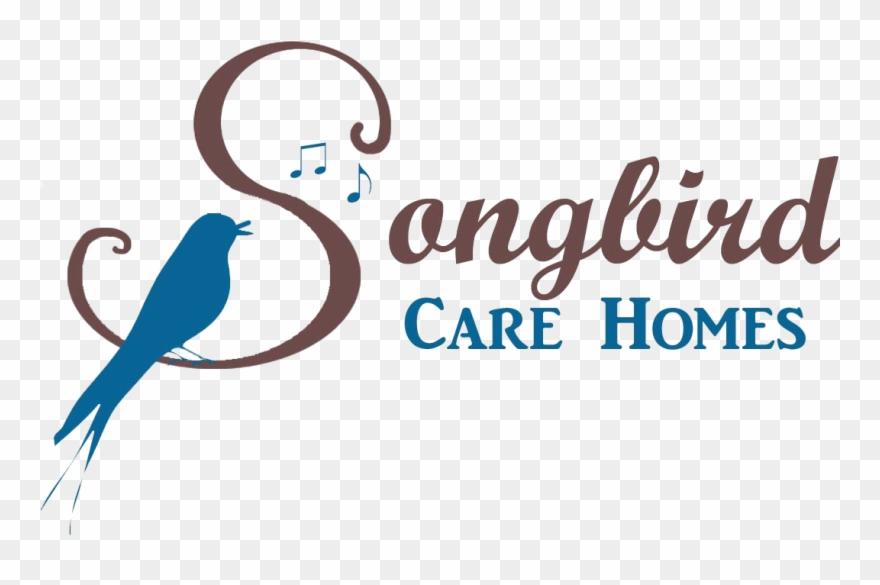 songbird # 4848622