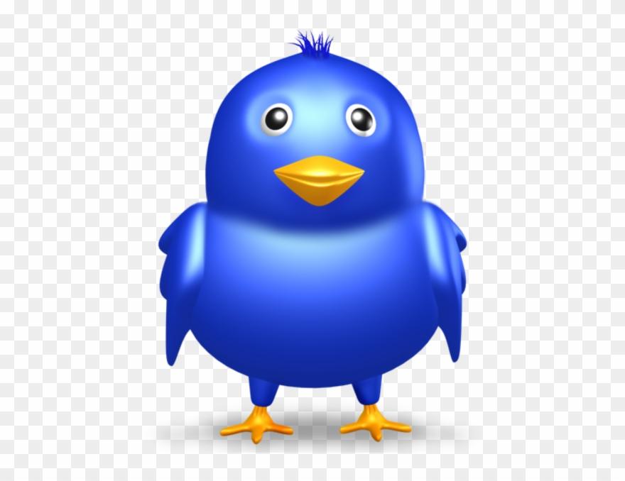 bird-nest # 4849086