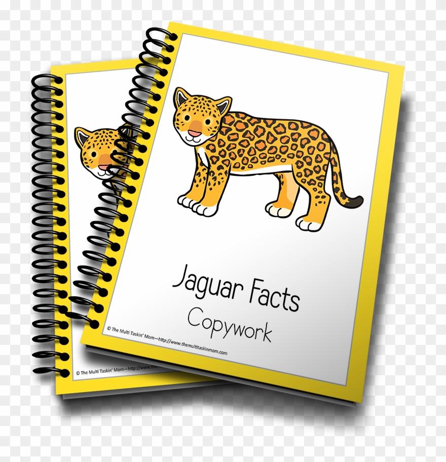 jaguar # 4848879