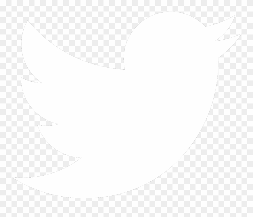 bird-nest # 4849186