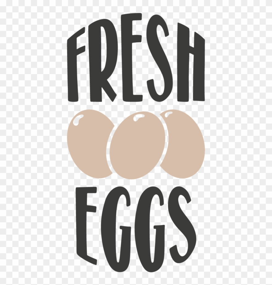 scrambled-eggs # 4848997