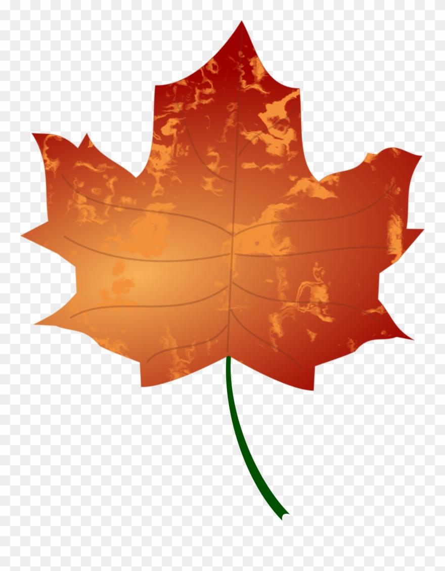 leaf # 4852926