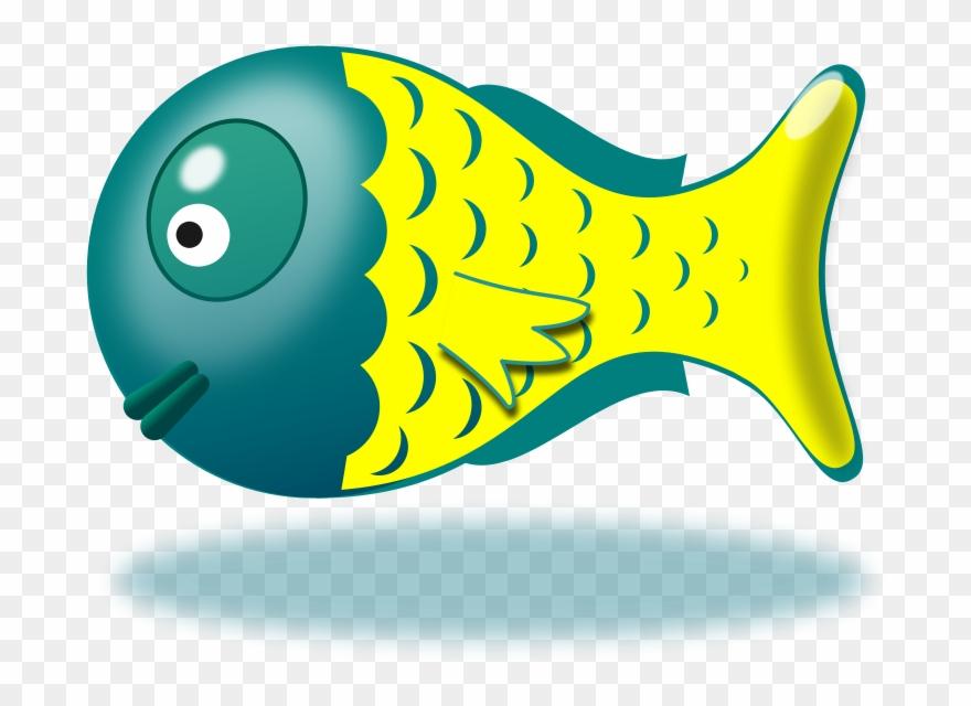 fish # 4855919