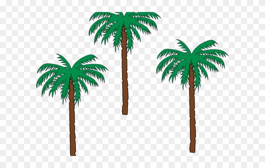 palm-tree # 4855641