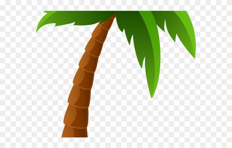 palm-tree # 4852166