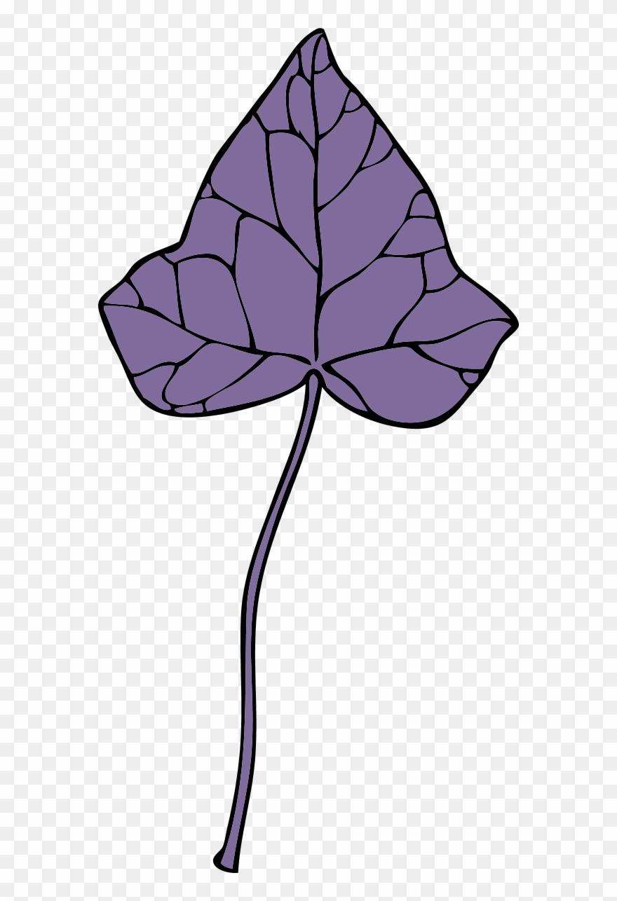 leaf # 4851860