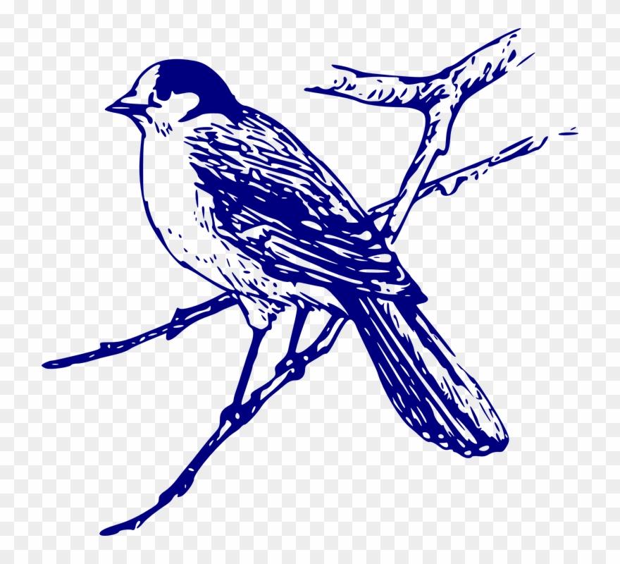 bird-nest # 4854470