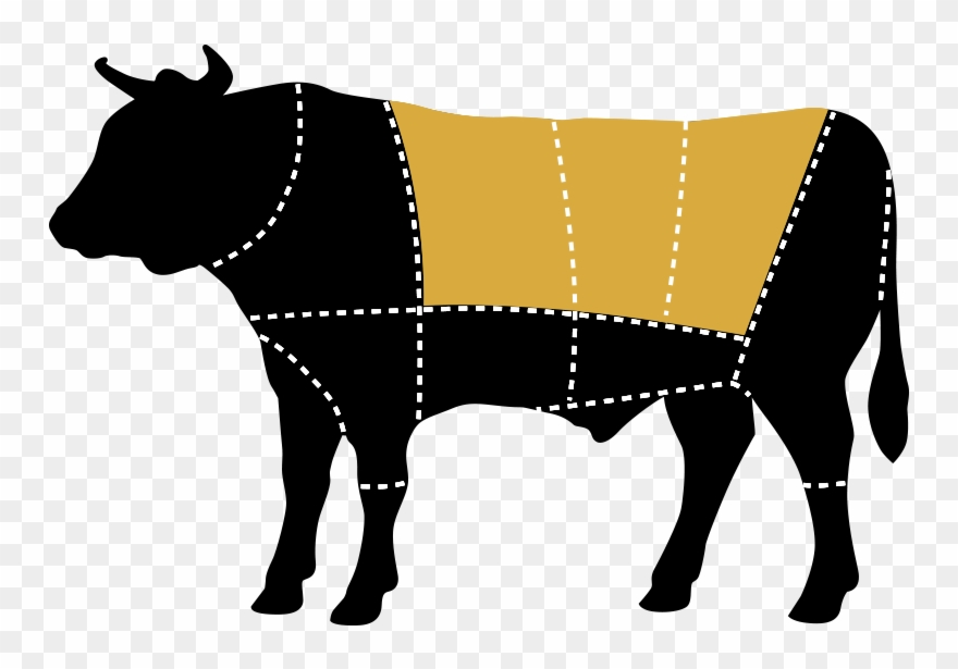 steak # 4853719